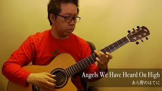あら野のはてに (acoustic guitar solo)