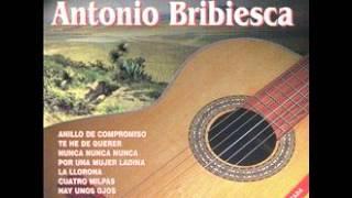 Antonio Bribiesca 20 Exitos/ Armando Trejo con las armonias del mariachi