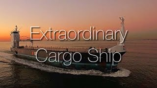 Extraordinary designed cargo ship