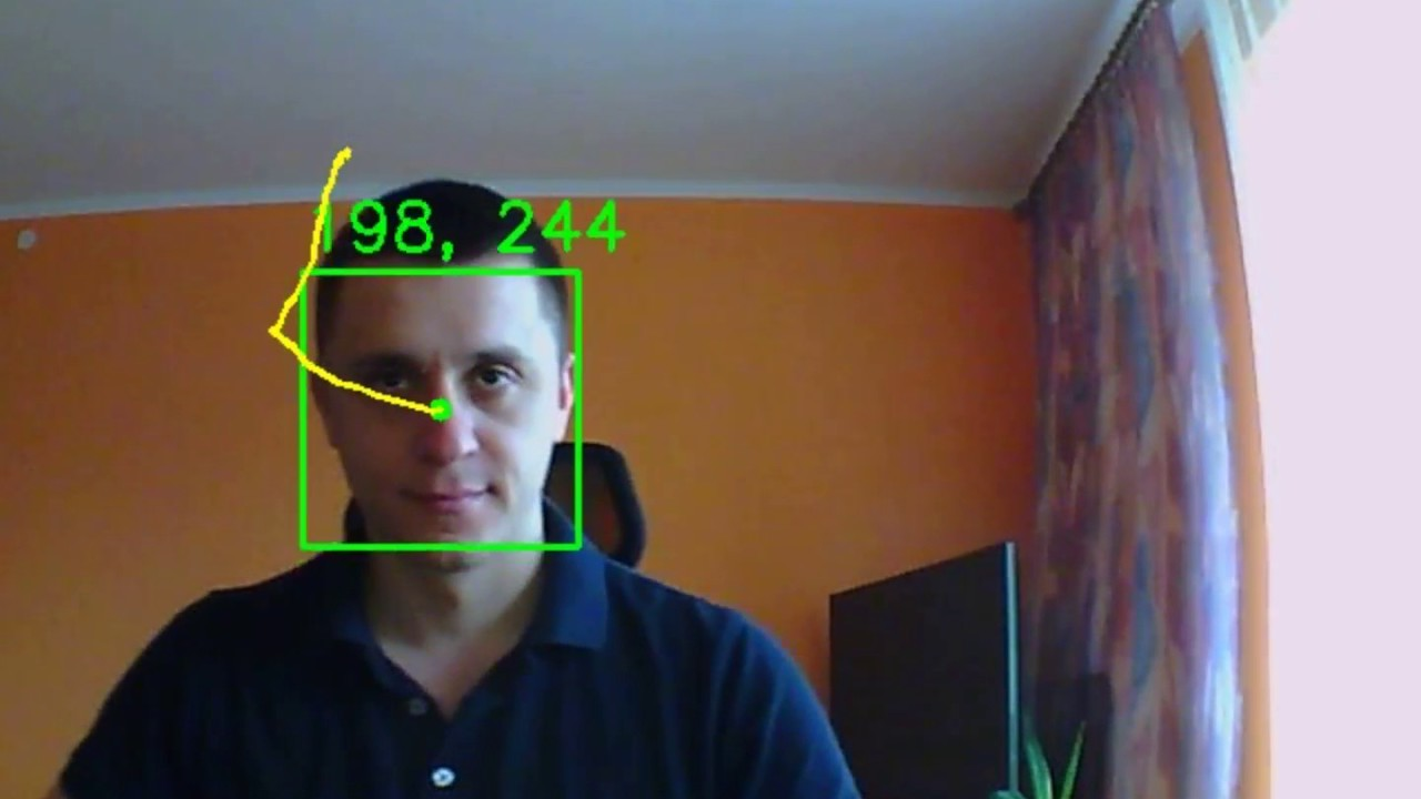 Face Detection and Tracking, DCS-5020L + OpenCV | Details