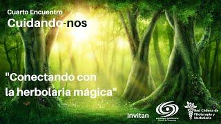 Conectando con la herbolaria mágica