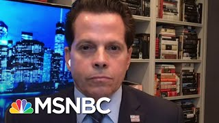 Scaramucci: 'I Applaud The President For Unifying The Country. It Just Happens To Be Against Him'