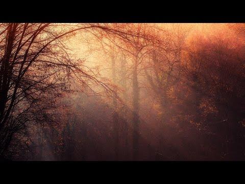 Fantasy Music - Autumn Fairies