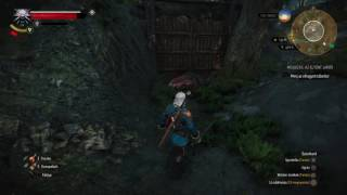 The Witcher 3: Wild Hunt – Game of the Year Edition Bug:)