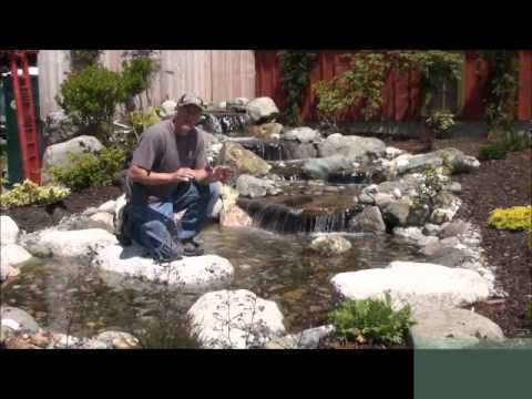 Waterfall And Waterpond Video Tutorials Pond Supply