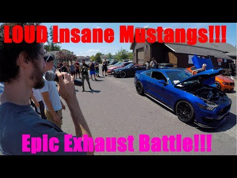 Mustangs Boosted With ProChargers Battle! 1000hp Cars and Coffee. Freehold Tire! 2015 Mustang GT!