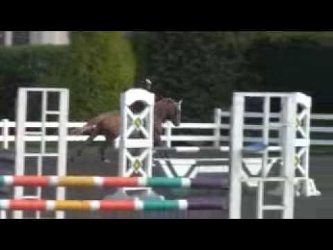 Patchetts BSJA Show Jumping