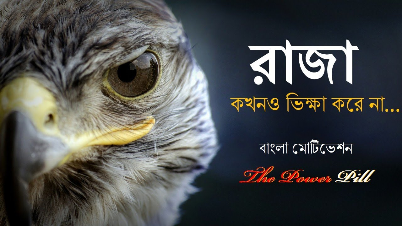 The Power Pill : Eagle Power Full Motivation - Bengali Motivational Video