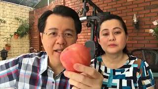 5 Tips on how to treat Diabetes, Ulcer, and Stress by Doc Willie Ong