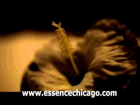 Chicago Facials,Chicago facial,Chicago Medical Spa,facials