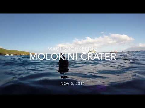 Snorkeling in Maui, Hawaii - GoPro (Molokini Crater, Makena Bay, Honolua Bay)