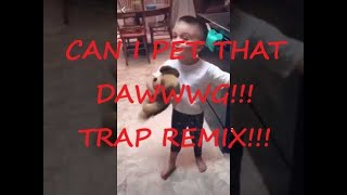 Can I Pet That Dog?!?  TRAP REMIX! (With Dancing Dogs!)