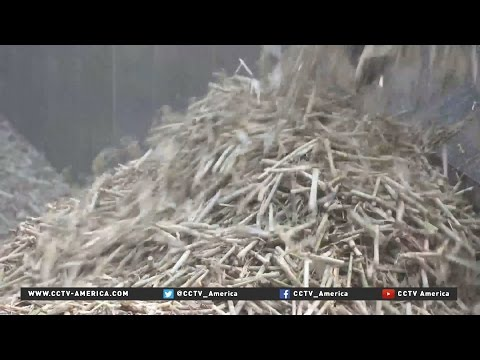 China to open Asia's biggest sugar mill in Cambodia