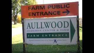 Portrait of Aullwood Farm by Kyle Reinhart