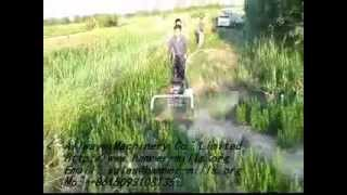 New best-sale Small farm grass cutter,alfalfa harvester,rice wheat reaper,mower AWF19