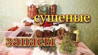 Заготовки на Зиму/Запасы сушеных овощей,фруктов,трав,пастилы/Как и в чем хранить?