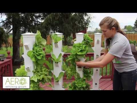 Aero Mobile Garden for Growing on a Rooftop or Patio