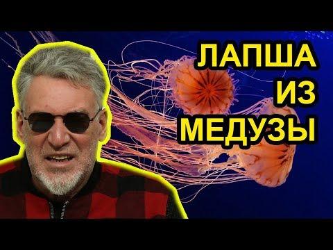 Медуза попала в