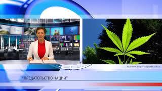 Легализация марихуаны - предательство нации