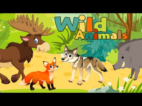 Wild Animals - Animal Sounds for Kids to Learn - Educational video