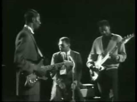 Little Walter - Hound Dog Taylor - Odie Payne ( Walter's Blues Live )