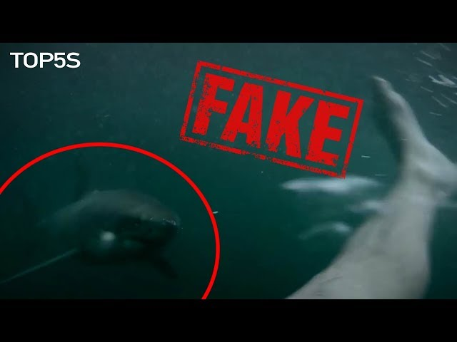 5 Ridiculous Viral Videos That Have Been Debunked