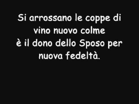 Nozze A Cana