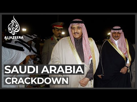 Saudi crackdown: King Salman's brother and nephew detained