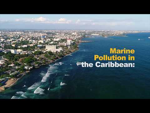Marine Pollution Threatens the Caribbean Sea