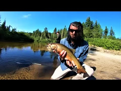 Brook Trout Fishing Canoe Trip And Catch & Cook