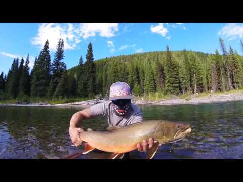 Fly Fishing Backcountry Bull Trout