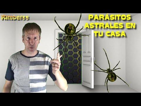 LOS PARÁSITOS ASTRALES QUE HAY EN TU CASA: PASOS PARA LIMPIARLOS