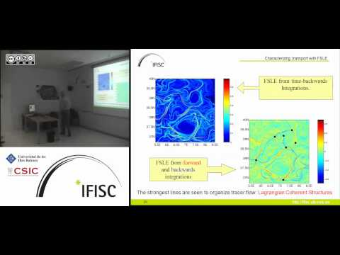 Mobility and flow effects across biological scales