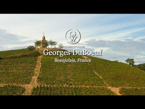 Beaujolais With Franck DuBoeuf