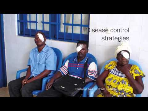 Global Blindness course: VISION 2020: The Right to Sight