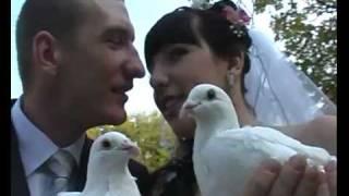 Свадьба в стиле Dub Step