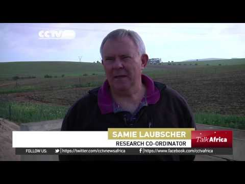 Talk Africa:  Agricultural transformation in Africa