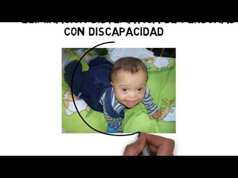 PROYECTO DE LEY EN FAVOR DE LA DESPENALIZACIÓN DEL ABORTO