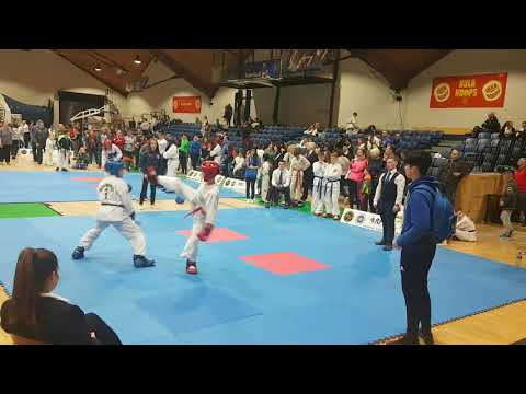 Farid at Dublin Open 2018 - Final of Sparing competition