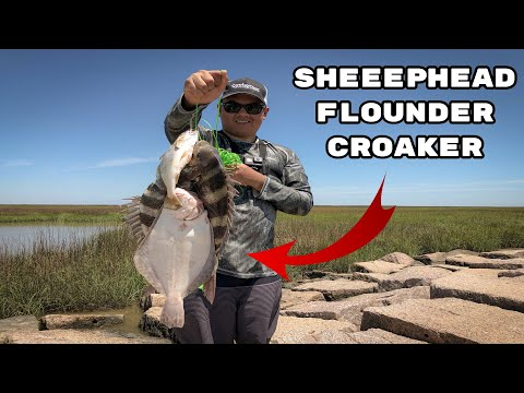 Catching All Kinds Of Fish At North Jetty | Galveston, Texas