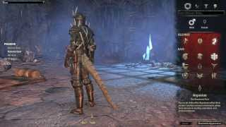 The Elder Scrolls Online Medium Armor Preview All Races No