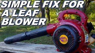 Poulan pro leaf blower won't start after long storage.