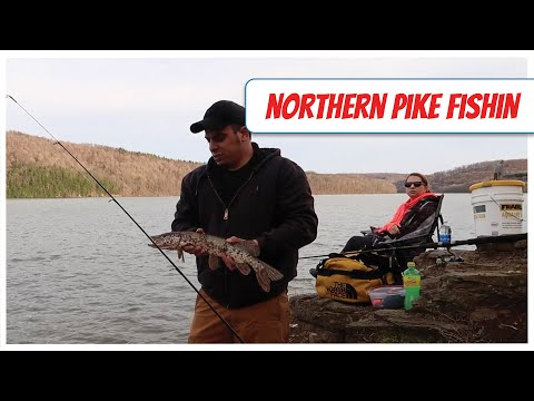 Northern Pike Fishing in PA - Part 2 Round 3