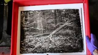 Darkroom topshit tricks: Split tonning with sulphide and selenium toner