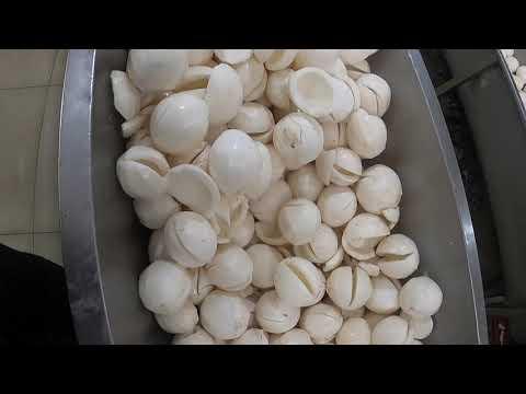 Our production process(sri Lankan virgin coconut oil)