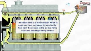 Le circuit de refroidissement du moteur de la voiture 2/2