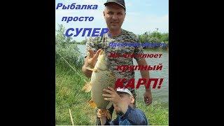 На что клюет КРУПНЫЙ КАРП!!! Супер рыбалка в Одесской области. Кладоискатели Одессы.