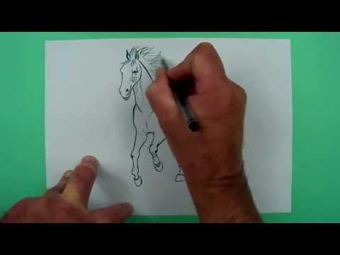 Wie zeichnet man ein trabendes Pferd? Zeichnen für Kinder