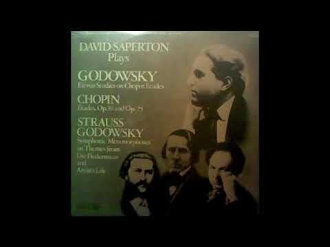 David Saperton Plays Godowsky   IPA 118