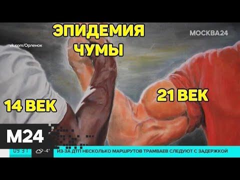 Пользователи соцсетей размещают картинки об эпидемии коронавируса - Москва 24